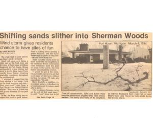 Times Herald Article March 1984